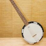 6-String Banjo (Guitar-Banjo) Tennessee